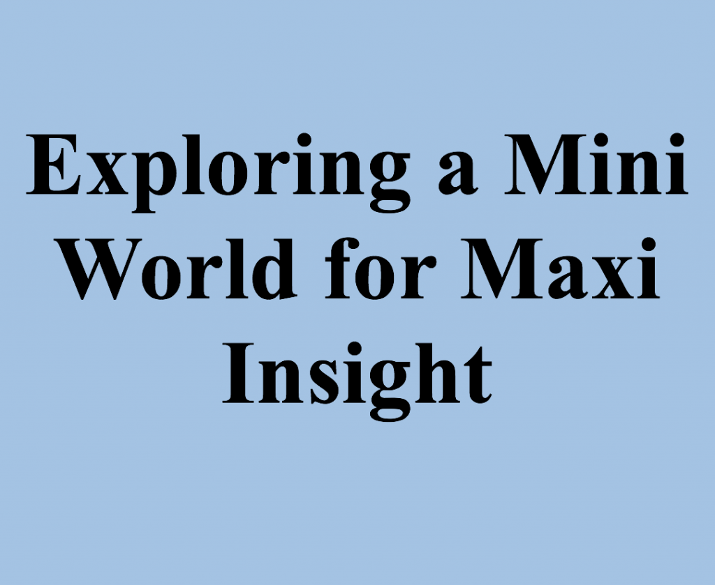 Exploring a Mini World for Maxi Insight